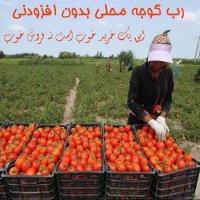 رب گوجه خانگی بدون افزودنی قوطی ۵ کیلویی