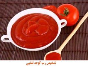 تشخیص رب گوجه تقلبی