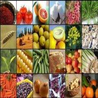 محصولات باغی و کشاورزی