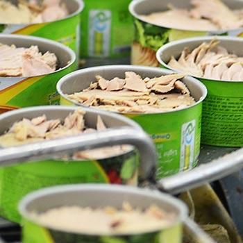 کنسروهای گوشتی تن ماهی و مرغ