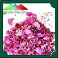 غنچه خشک گل محمدی – بسته بندی ۱۰ کیلویی