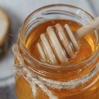 فروش عمده عسل انگبین