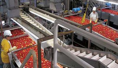فروش عمده رب گوجه فرنگی ارزان قیمت