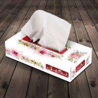 دستمال کاغذی ۲۰۰ برگ نگین – کارتن ۵۰ تایی