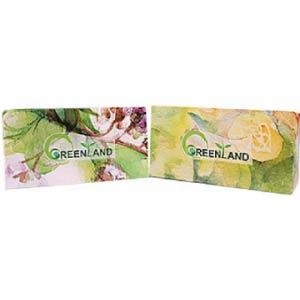 دستمال کاغذی گرین لند 300 برگ