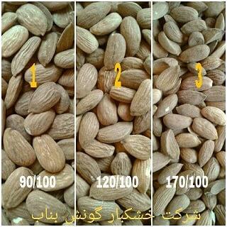 فروش مغز بادام ایرانی