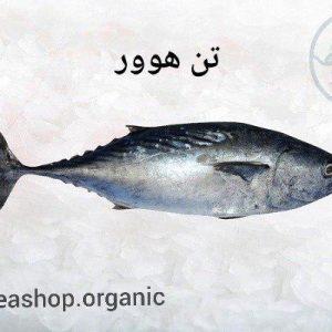 فروش ماهی تن هوور
