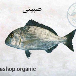 فروش ماهی صبیتی